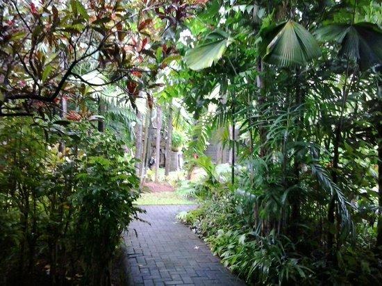 Puri Santrian: garden area