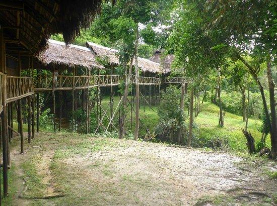 Amazonia Expeditions' Tahuayo Lodge: Lodge