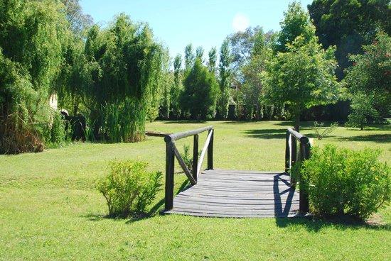 Posada la Merced: Jardín