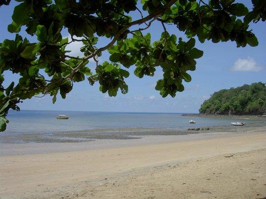 Le Jardin Maore: Vue de la plage, à marée basse