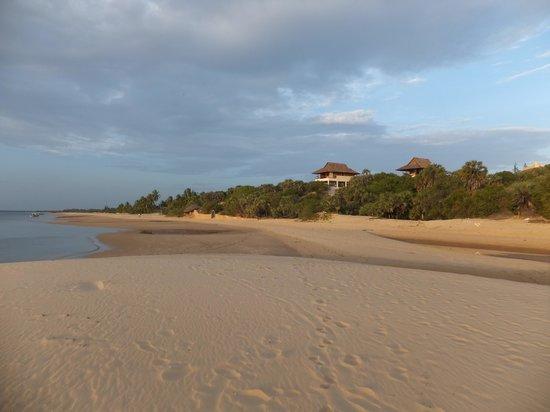 Kizingoni Beach: pristine tropical beach