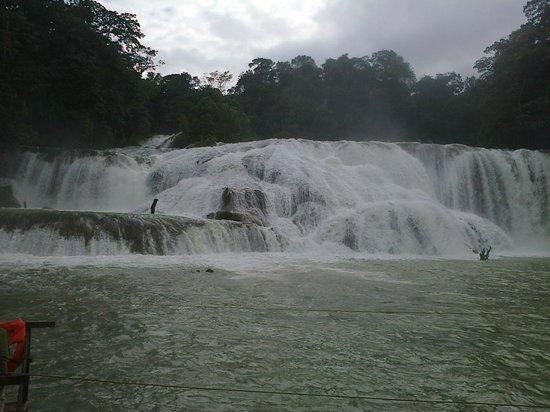Cascadas de Agua Azul : vista frontal de cascada