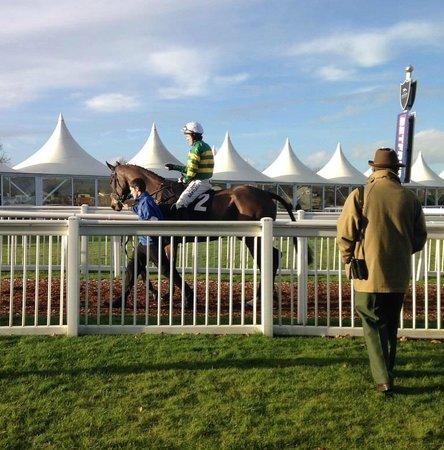 Newbury Racecourse: The great AP McCoy
