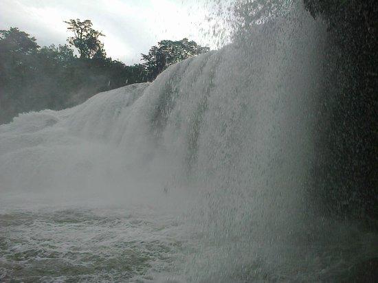 Cascadas de Agua Azul : cascada vista desde el margen izquierdo