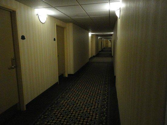 Clarion Hotel Anaheim Resort: Low light... haunted?