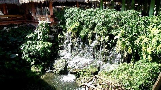 Iberostar Quetzal Playacar : Waterfall by the buffet