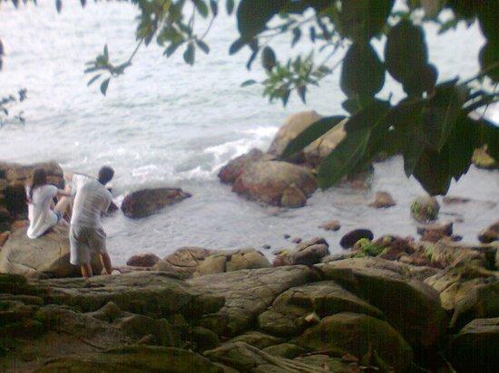 Bombinhas Beach: Bombinhas