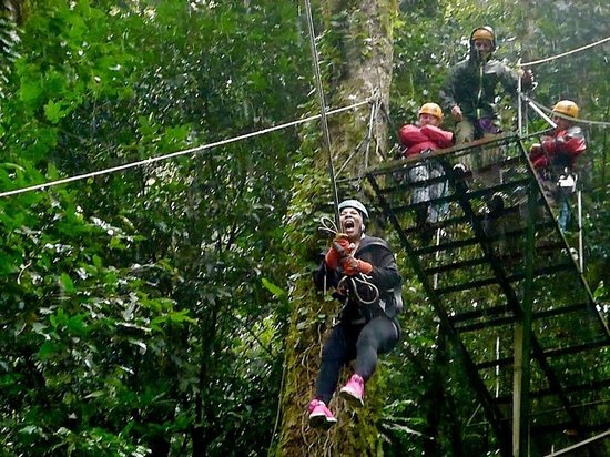 Monteverde Extremo Park: Tarzan swing!