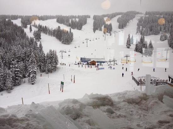 Vail Mountain Resort: Mid Vale on Christmas Eve, snowing- amazing!