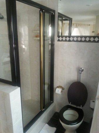 Bradach Manor: Shower