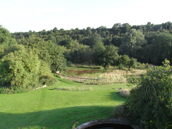 Lawcus Farm Guest House : Overlooking the stream