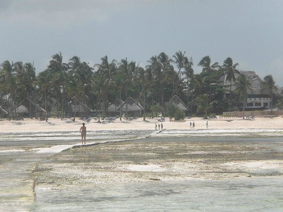 Karafuu Beach Resort and Spa : la passerella