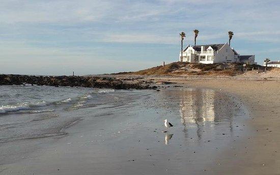 Oystercatcher Lodge: Along the beach