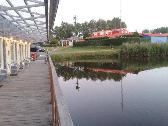 Waterlodge de Aalscholver : Floating rooms
