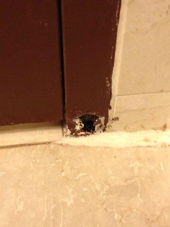 Sheraton Pentagon City Hotel : hole