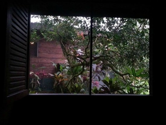 Chachagua Rainforest Eco Lodge: View from our bed