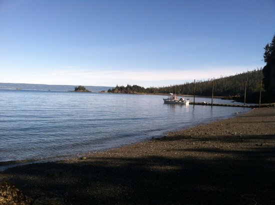 Otter Cove Resort: Serene and Sensational 8/24/2013 Paladino Gaszy Wedding