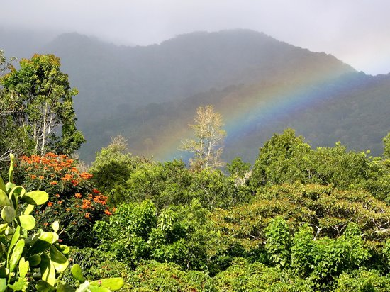 Boquete Coffee Tour : our rainbow view that lasted an hour!