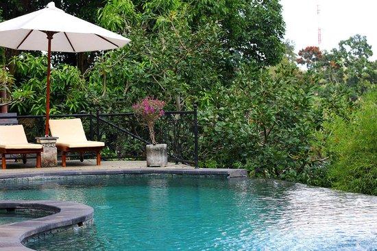 Ubud Dedari Villas: Очень приятный бассейн