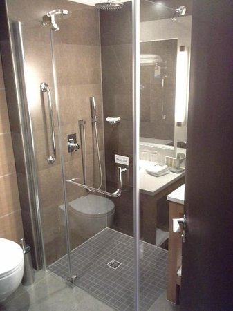 Radisson Blu Royal Hotel, Dublin: nice and clean