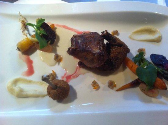 La laiterie: Pigeon des flandres