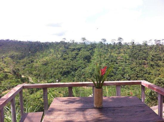 Puri Sebatu Resort : amazing views
