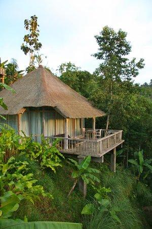 Puri Sebatu Resort : The room