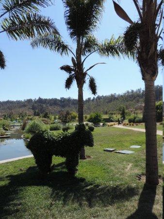 Parque Bicentenario : Paisagismo
