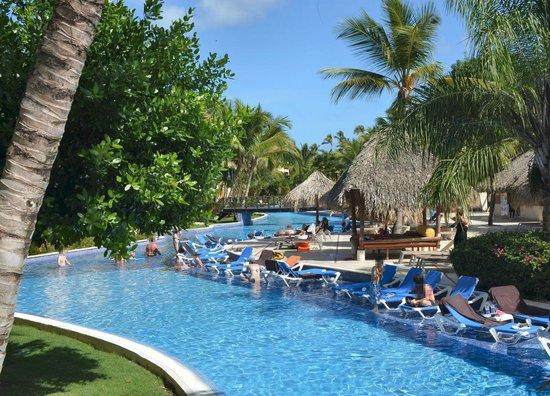 Dreams Punta Cana Resort & Spa: Pool (partial)
