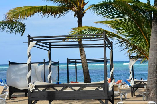 Dreams Punta Cana Resort & Spa: Lounge Beds in Preferred Club Beach Area