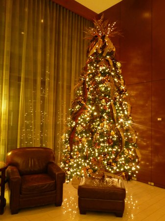Hyatt Regency Lexington: Christmas Tree in Lobby