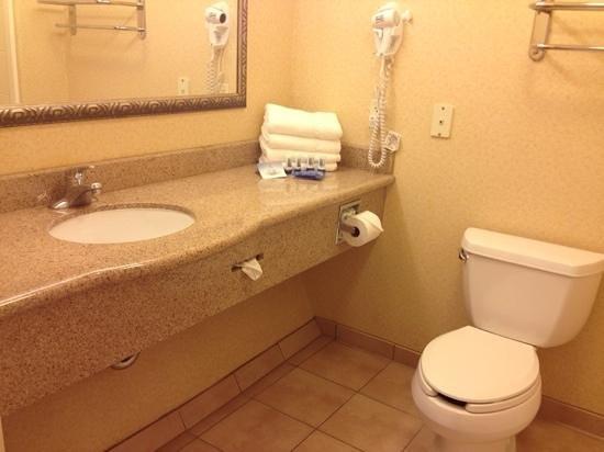 Fairfield Inn & Suites Fairfield Napa Valley Area : Bathroom