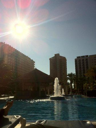 Sol Pelícanos Ocas: Pool