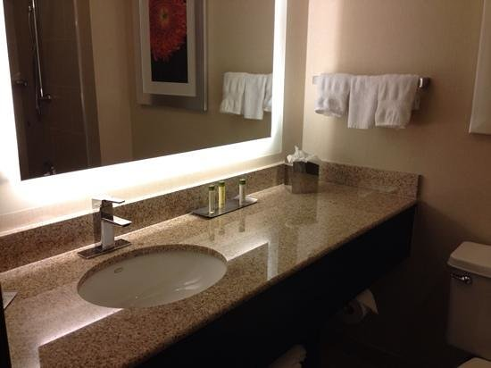 DoubleTree by Hilton San Francisco Airport : Sink