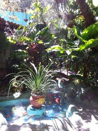 Casa Lima B & B: Koi pond