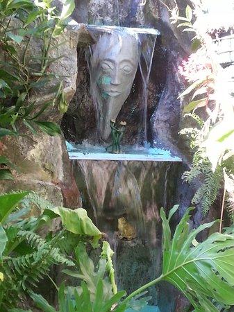 Casa Lima B & B: Waterfall
