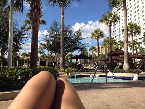 Hilton Orlando Bonnet Creek : Pool