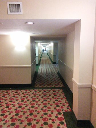 Sawgrass Grand Hotel and Suites Sports Complex : Carpeted corridors