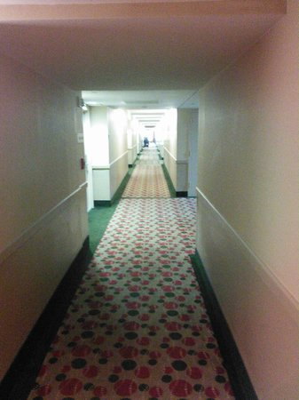 Sawgrass Grand Hotel and Suites Sports Complex : Corridor