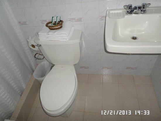 Casa Florencia Hotel: bathroom toilet and sink