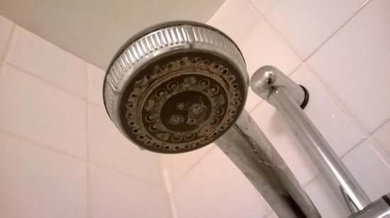 Keppels Head: The shower head