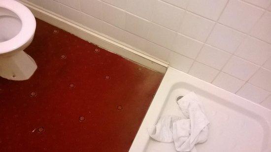 Keppels Head: The bathroom carpet...gross