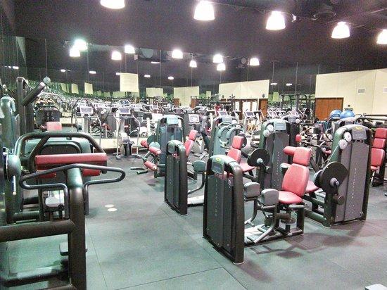 Bonaventure Resort & Spa: Best gym in Ft Lauterdale I know so far