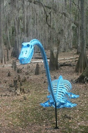 Tallahassee Museum : Dinosaur