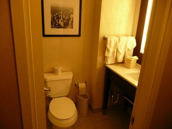Hilton Garden Inn Times Square: Stylish bathroom