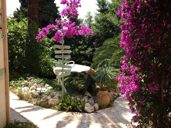 Villa Saint Exupery Gardens Hostel : Gardens