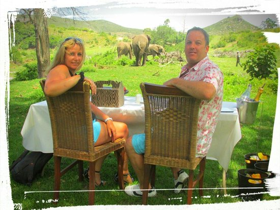 Botlierskop Private Game Reserve: Picnic with elephants Nov 26 2013