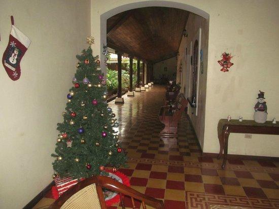 Hotel La Mision: Christmas tree!
