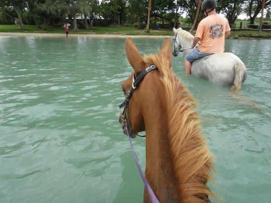 Club Hippique Adventure Park: Lagoon
