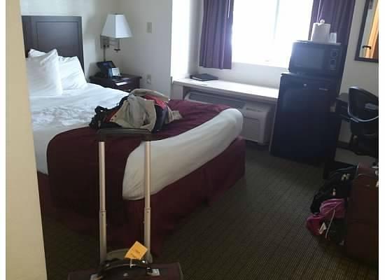 Jacksonville Plaza Hotel & Suites: Room